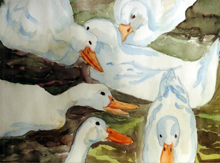 Duck Pond is a watercolor Mindy painted